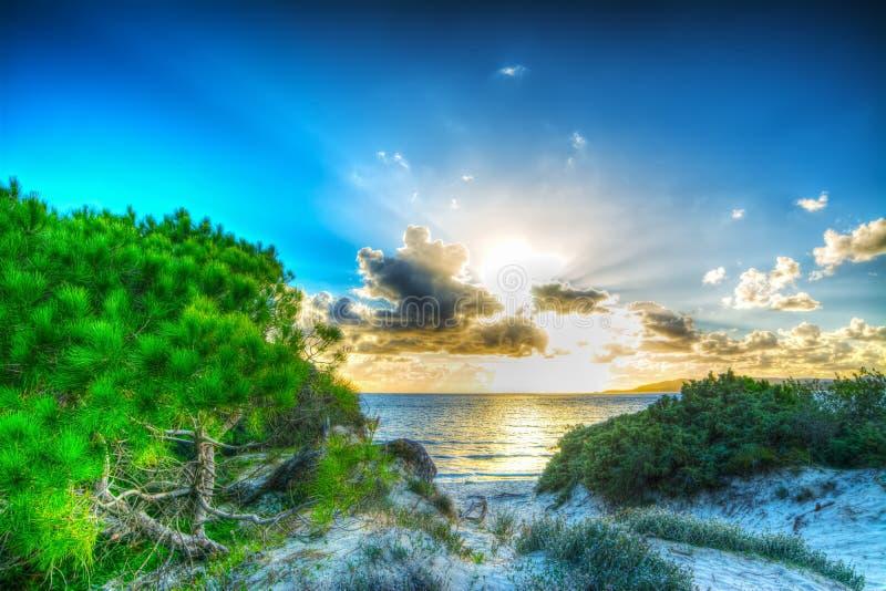 Le soleil brillant au coucher du soleil photographie stock libre de droits