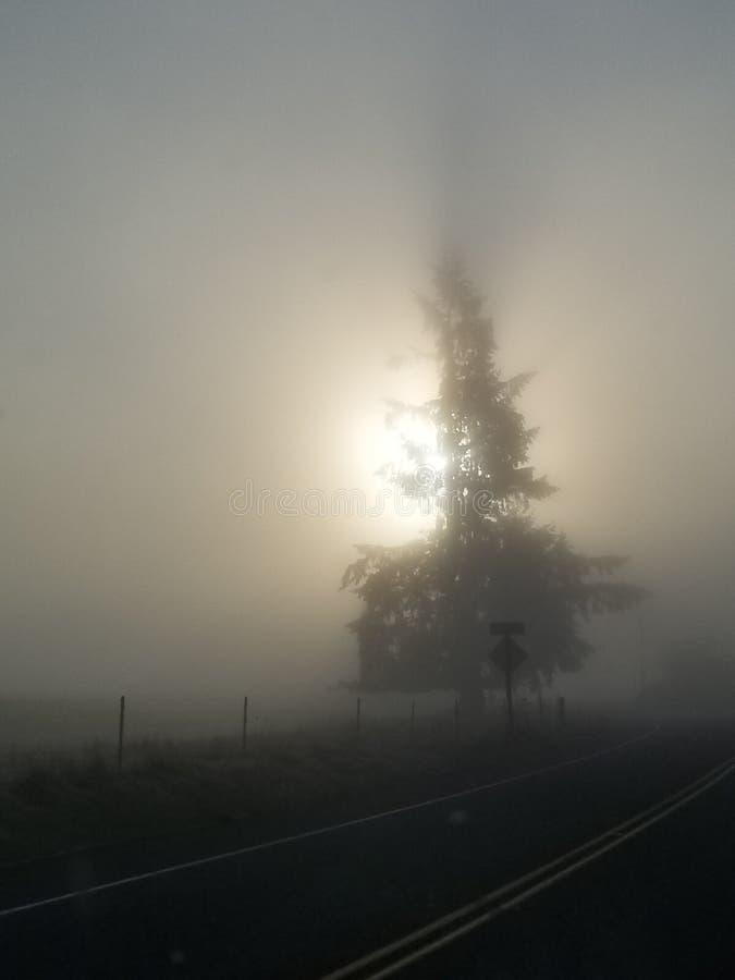 Le soleil caché photographie stock libre de droits