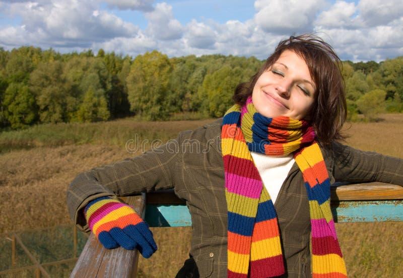 Le soleil d'automne image libre de droits