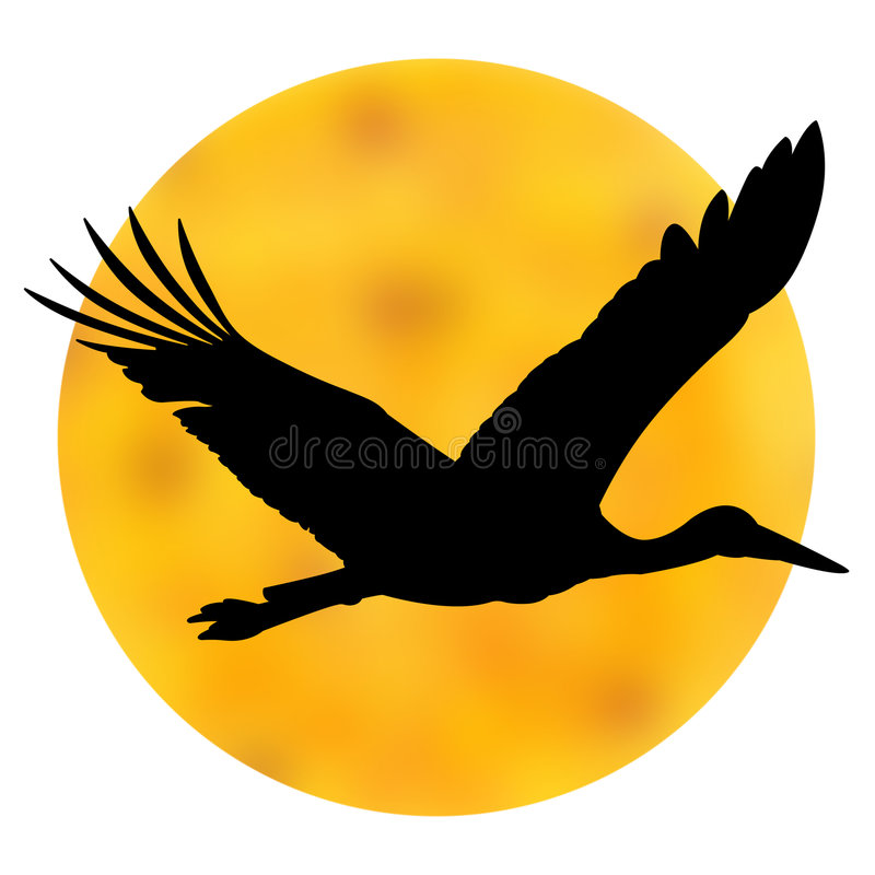 le soleil de cigogne de silhouette photos stock