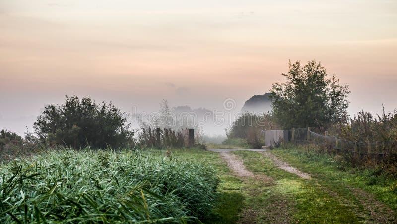 Le soleil de début de la matinée d'hiver sur le chemin en retard d'herbe d'automne images stock