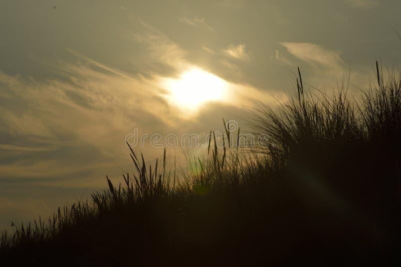 Le soleil de soirée au-dessus des dunes photographie stock libre de droits