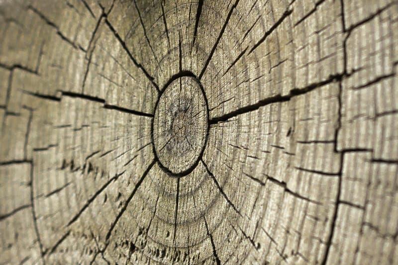 Le soleil en bois image libre de droits