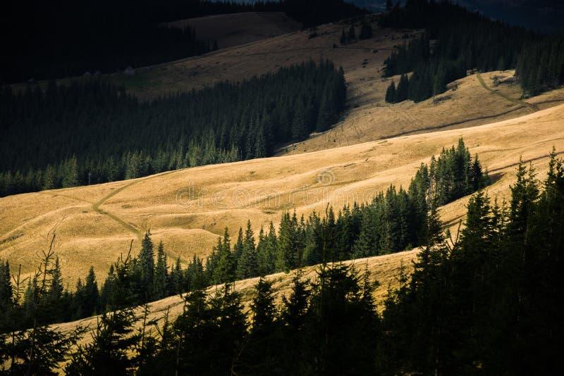 Le soleil illumine la montagne carpathienne photos libres de droits