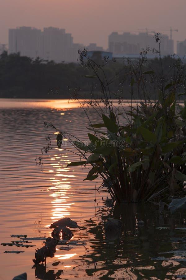 Le soleil inversé dans l'eau photo stock