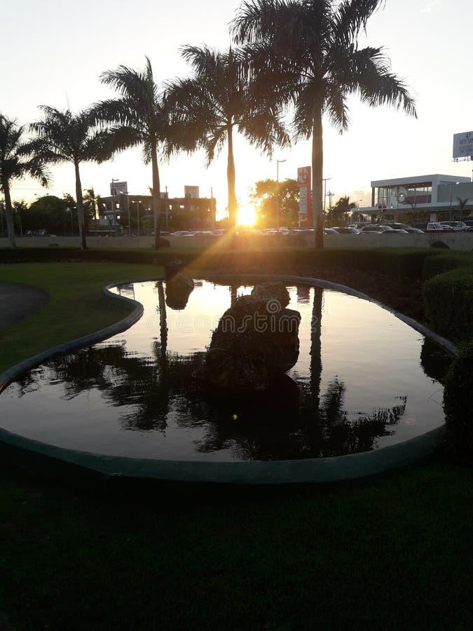 Le soleil reflété dans la piscine images libres de droits