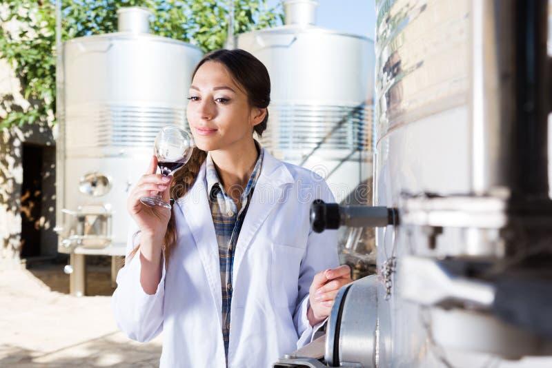 Le Sommelier goûte le vin à l'usine italienne de vin images stock