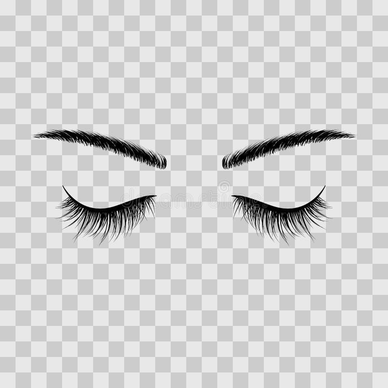 Le sopracciglia e gli occhi neri dei cigli si sono chiusi Pubblicità dei cigli falsi Illustrazione di vettore isolata su fondo tr illustrazione di stock