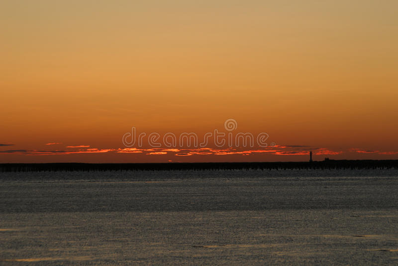 Le sourcil orange de la mer images stock