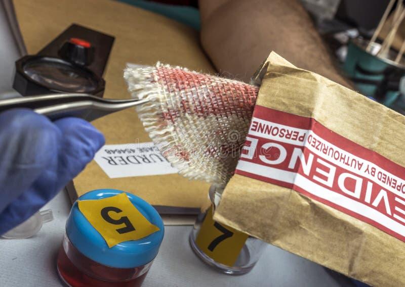 Le spécialiste en police examine le morceau de tissu souillé avec le sang appartenant à la victime du meurtre image libre de droits