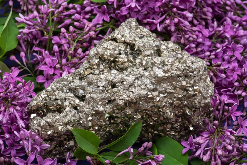 Le spécimen naturel de groupe de pyrite du Pérou a entouré par la fleur lilas pourpre photos libres de droits