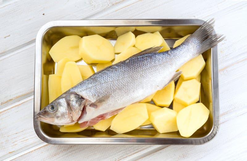Le spese generali fanno il branzino pescare sulle ruote della patata sulla st dello strato di biscotto fotografia stock