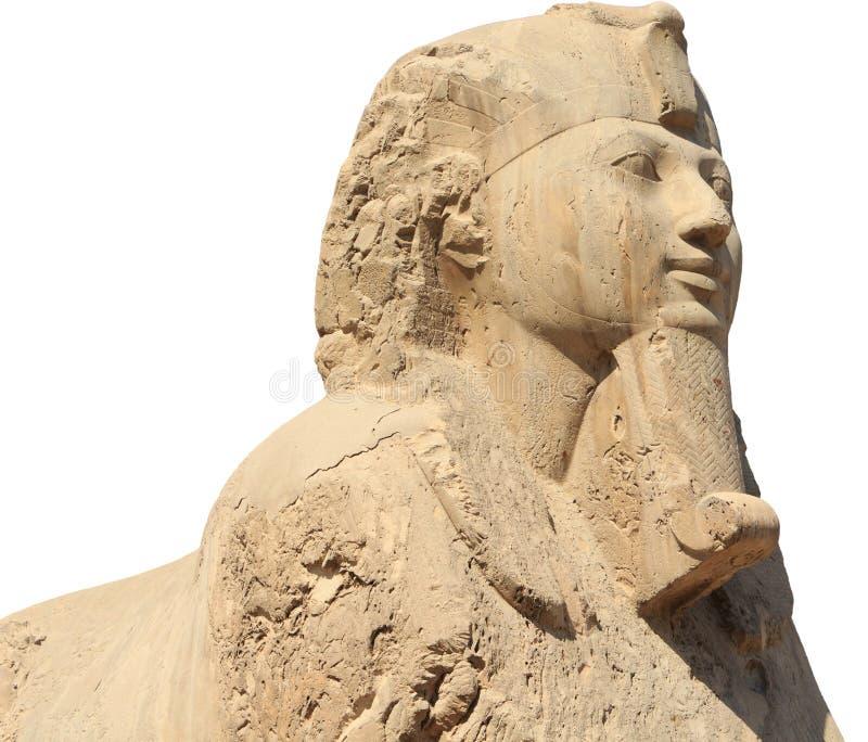 Le sphinx d'albâtre de Memphis, Egypte image stock