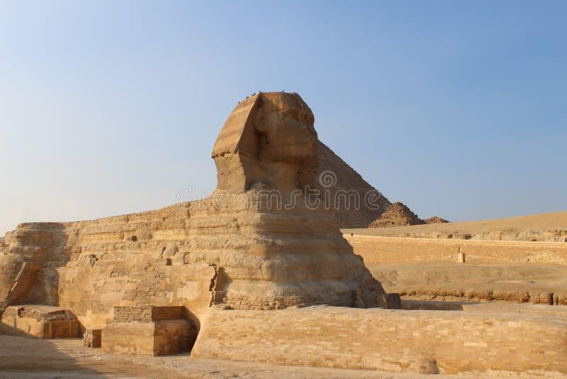 Le sphinx - Gizeh Egypte images libres de droits