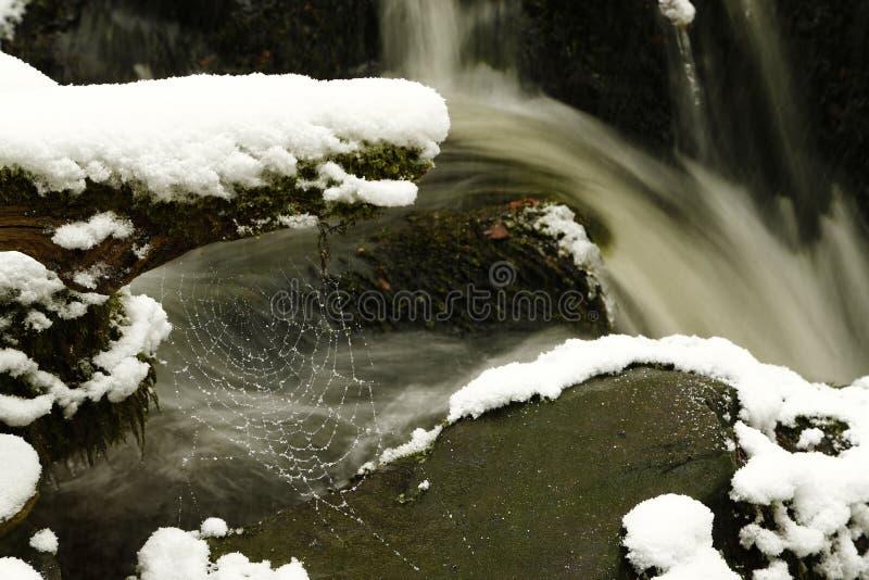 Le sponde del fiume a flusso rapido hanno ricoperto nei cristalli di ghiaccio e della neve fotografia stock libera da diritti