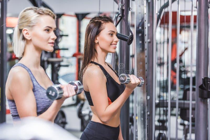 le sportive kvinnor som utarbetar med hantlar arkivfoton