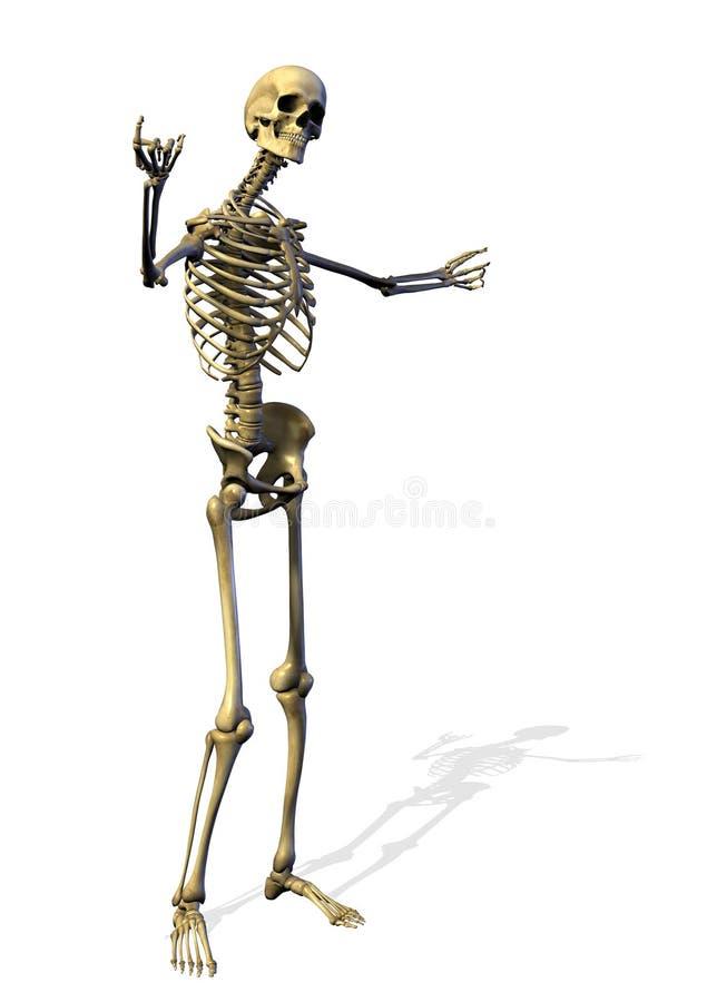 Le squelette - geste bienvenu - comprend le chemin de découpage illustration de vecteur