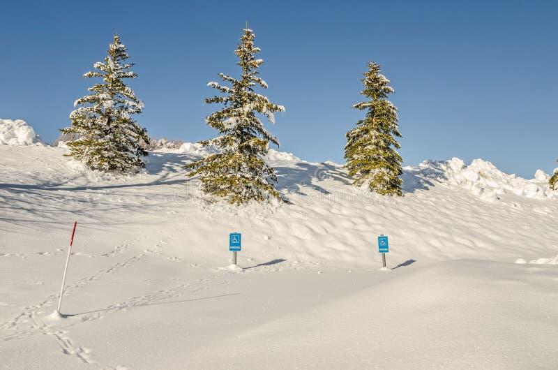 Le stationnement d'handicap signe dedans la neige photos stock