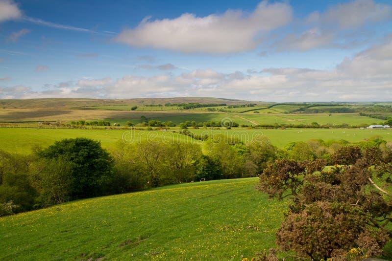 Le stationnement national d'Exmoor au Devon image libre de droits