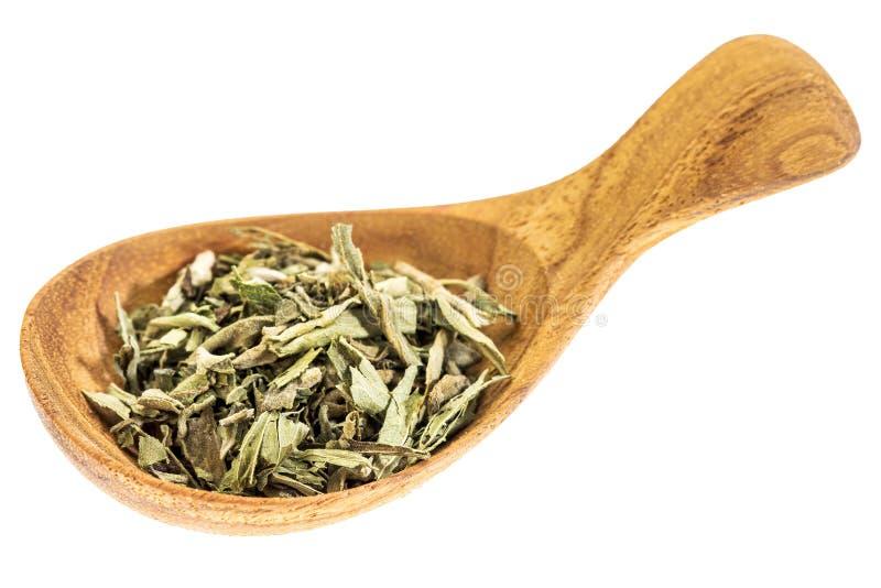 Le Stevia a séché des feuilles sur la cuillère en bois images stock