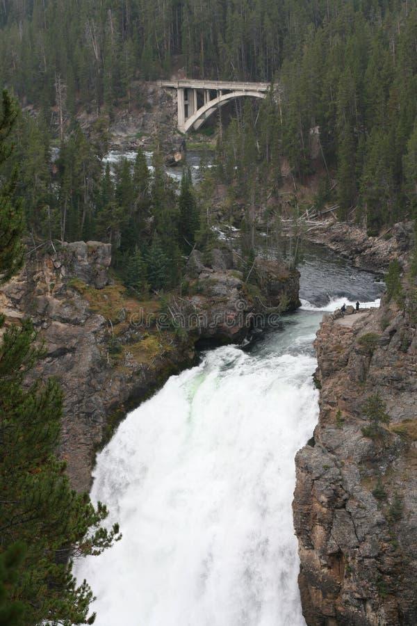 Le stimulant tombe en parc de Yellowstone images stock