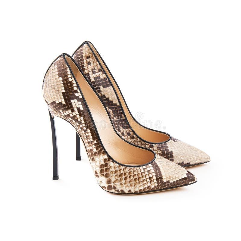 Le studio a tiré d'une paire d'une chaussure femelle à talons hauts de cuir de serpent images stock