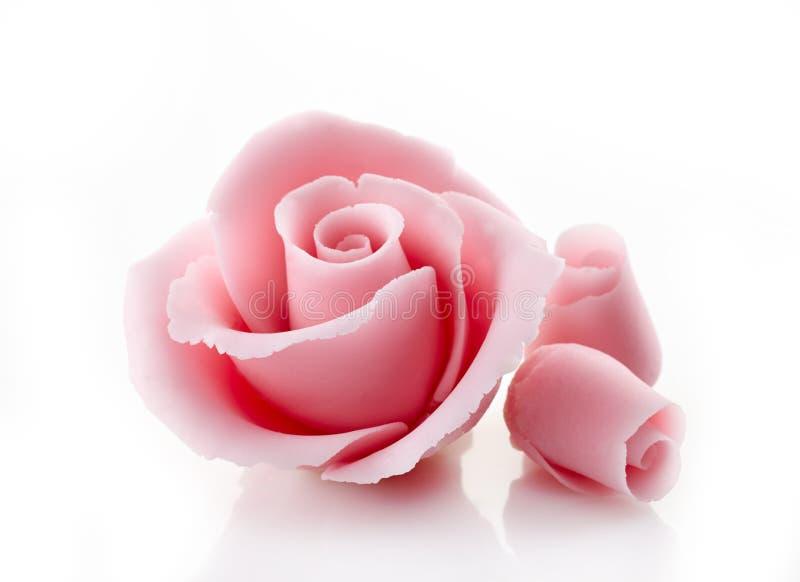 Le sucre décoratif rose s'est levé photo stock
