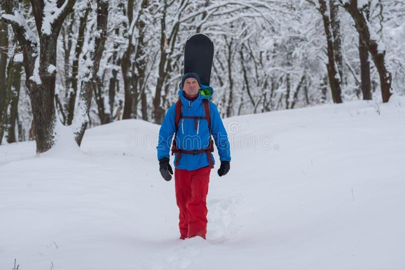 Le surfeur heureux avec le sac à dos marche par la forêt images libres de droits