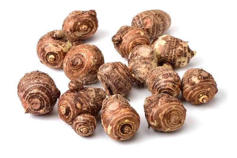 Le taro est les nourritures aliment-riches et peut être fait cuire beaucoup de différentes voies C'est un taro produit dans Guang photographie stock libre de droits