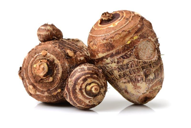 Le taro est les nourritures aliment-riches et peut être fait cuire beaucoup de différentes voies C'est un taro produit dans Guang images stock