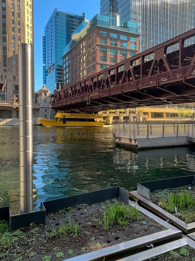 Le taxi de l'eau croise sous le pont en rue de Wells image stock