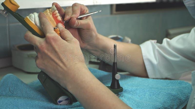 Le technicien dentaire enlève la cire excédentaire du dentier avec un scalpel images libres de droits