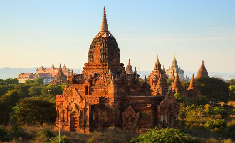 Le tempie di bagan al tramonto, Bagan, Myanmar fotografia stock