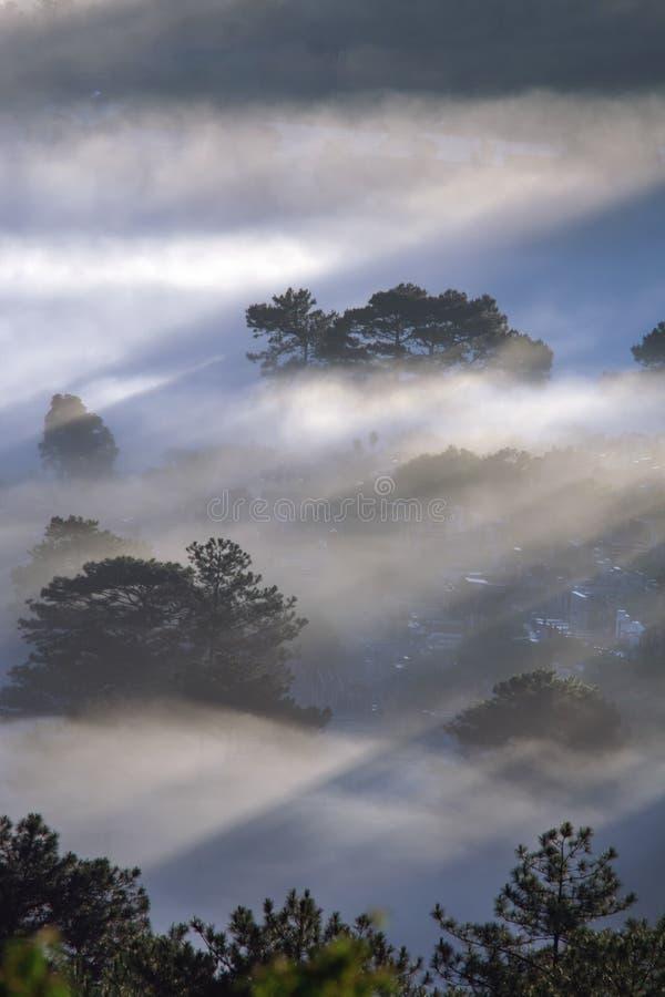 Le terre del plateau di Dalat della copertura della nebbia, Vietnam, fondo con magia della nebbia densa e del sole rays, il sole  fotografie stock libere da diritti