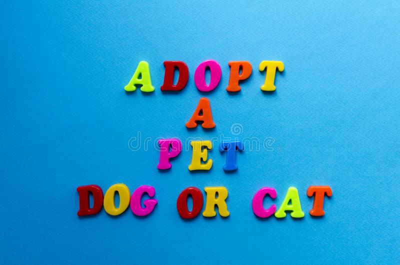 Le texte adoptent un chien ou un chat des lettres colorées en plastique sur le fond de papier bleu photo libre de droits