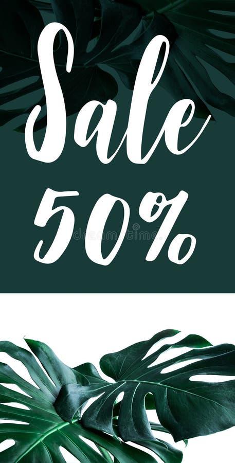 Le texte de la vente 50% avec de vraies feuilles de monstera a placé sur le fond blanc images libres de droits
