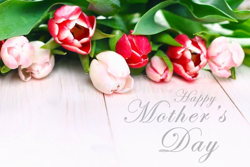 le texte heureux du jour de mère se connectent les tulipes roses sur le fond en bois rustique blanc Concept de carte de voeux ima photo stock