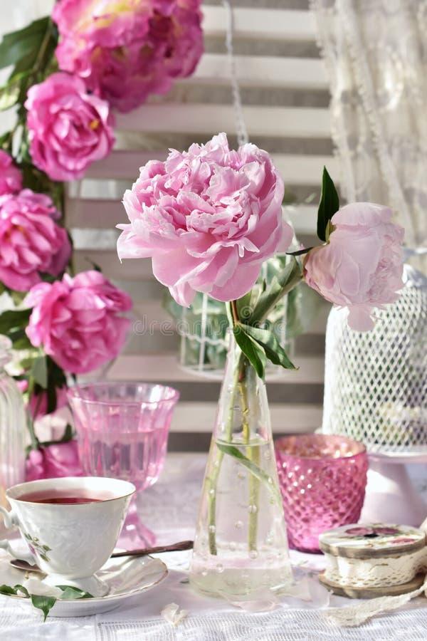 Le thé de fruit dans la belles tasse et pivoine de porcelaine fleurit image stock