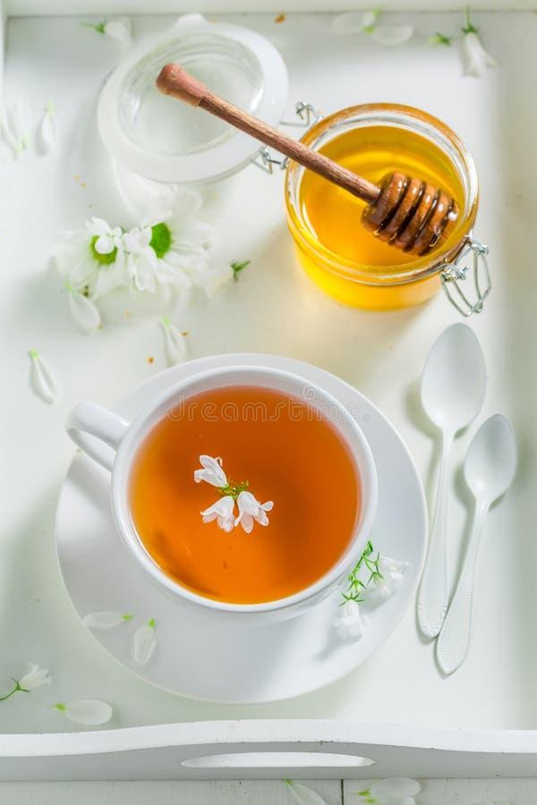 Le thé sain avec du miel avec le ressort fleurit sur le fond blanc photos stock