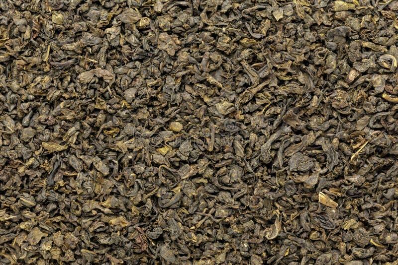 Le thé vert organique (sinensis de camélia) a séché les feuilles entières photographie stock libre de droits