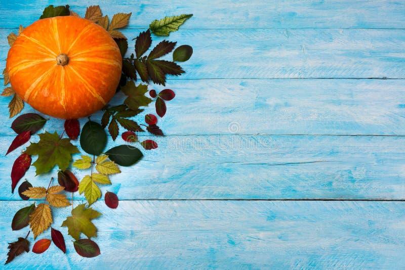 Le thanksgiving heureux avec la chute part sur le fond bleu image libre de droits
