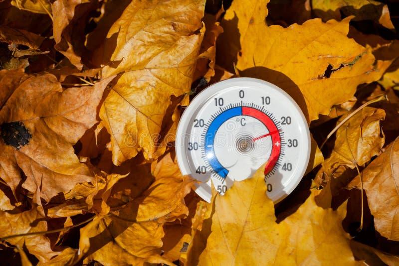 Le thermomètre extérieur dans des feuilles d'or d'érable montre le temperatur chaud photos libres de droits