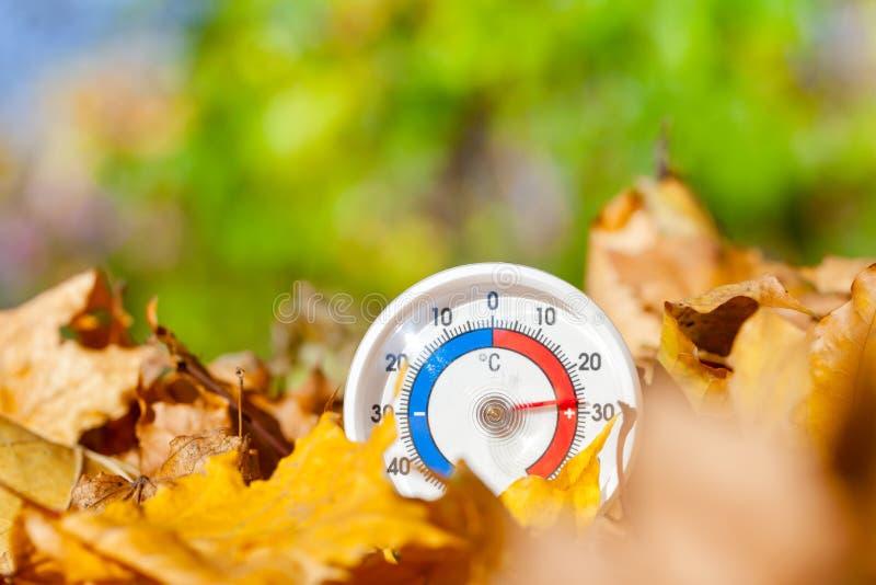 Le thermomètre extérieur dans des feuilles d'or d'érable montre le temperatur chaud photo libre de droits