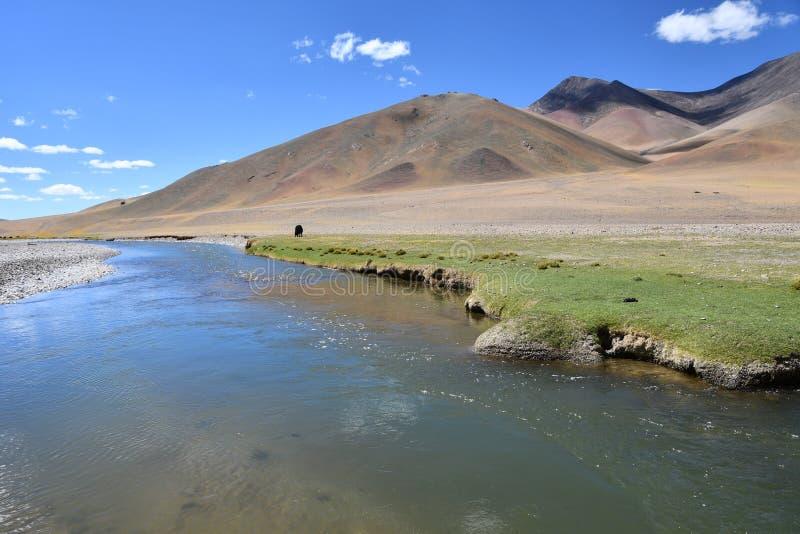 Le Thibet, Chine Plateau tibétain, rivière Ind pendant l'été photo libre de droits