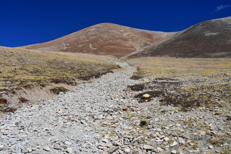 Le Thibet, paysage d'été à une altitude de plus de 5000 mètres Sur le chemin à la source de la rivière d'Ind photographie stock libre de droits