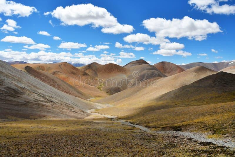 Le Thibet, paysage d'été à une altitude de plus de 5000 mètres Sur le chemin à la source de la rivière d'Ind images libres de droits