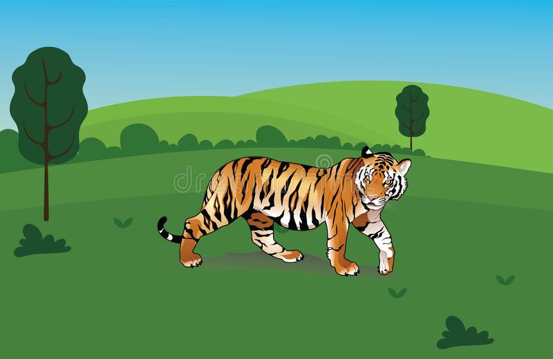 Le tigre illustration stock