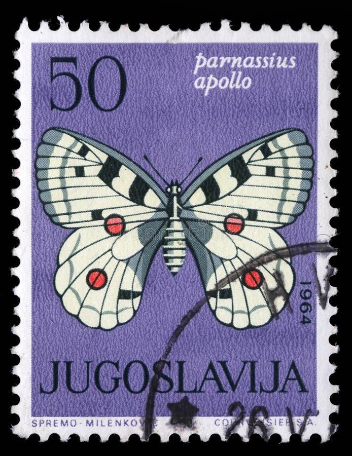 Le timbre imprimé en Yougoslavie montre le papillon images libres de droits