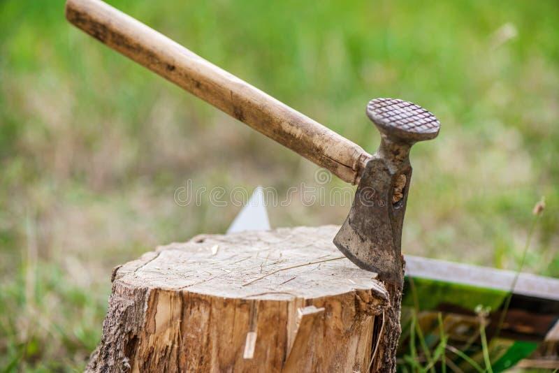 Le tir déprimé de la hache a coupé dans un tronçon sur le fond vert de campagne et de forêt photo libre de droits