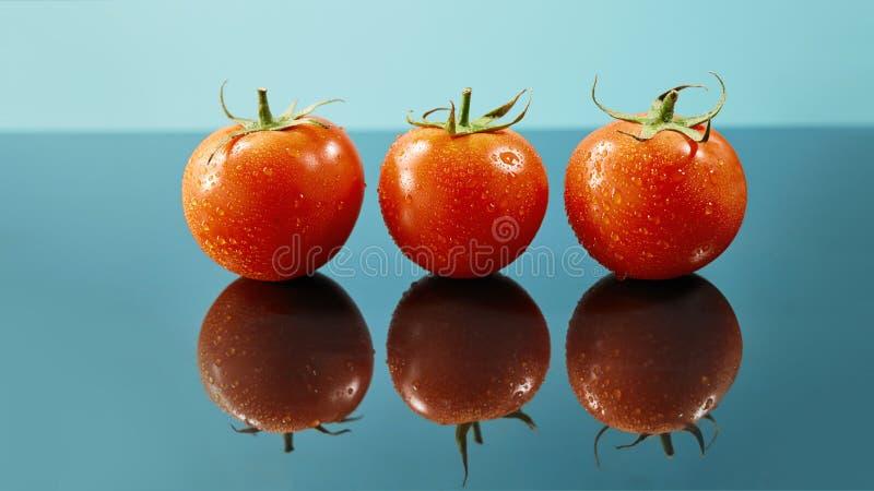 Le tir des tomates rouges apprêtent avec des baisses de l'eau d'isolement sur le fond bleu brillant photographie stock libre de droits